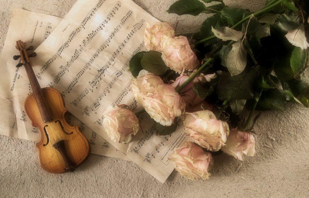 ヴァイオリンおすすめ